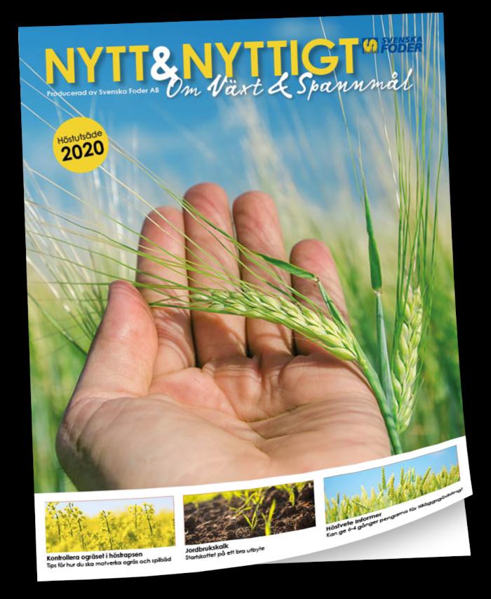 Framsida Nytt & Nyttigt om Växt & Spannmål Höstutsäde